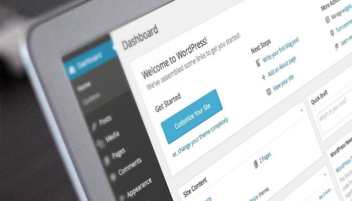 Few Words On WordPress And Its Application For New Sites